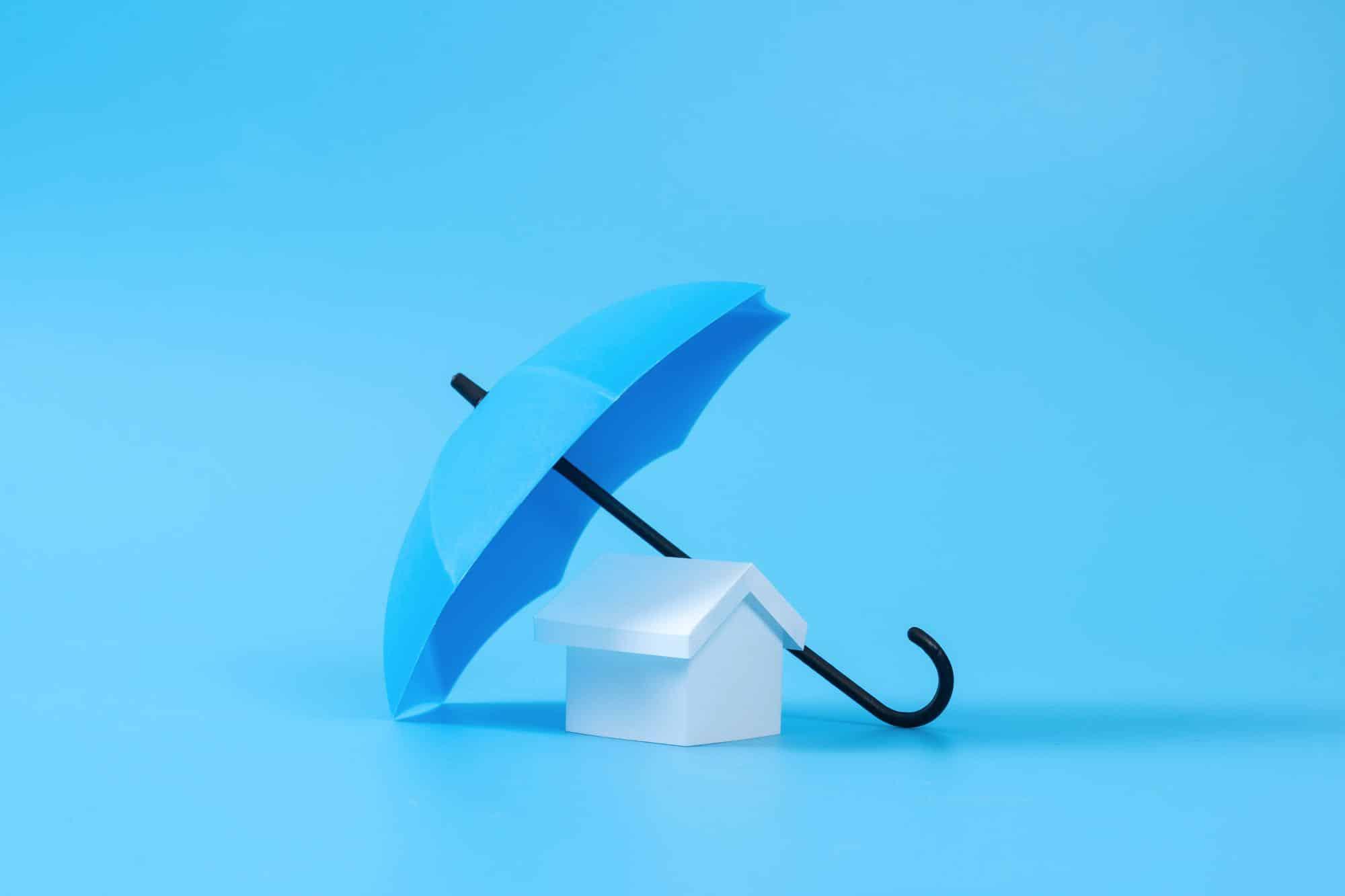 house-model-under-blue-color-umbrella-ETENSY7.jpg